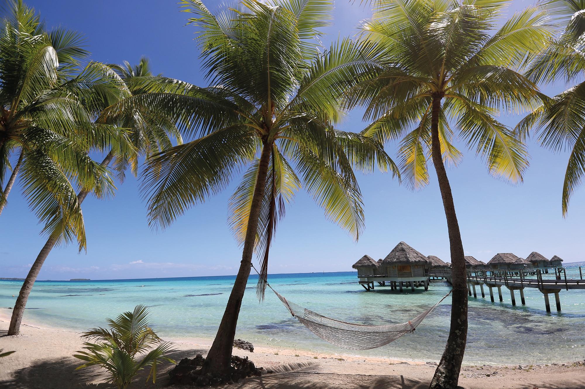 Tahiti – À travers la Ronde Tahitienne