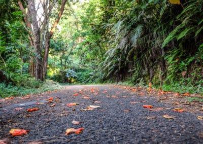 La route est étroite, l'asphalte est rugueux mais le plaisir est énorme !