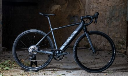 Canyon Endurace:on AL