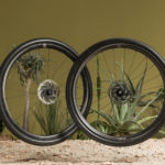 Nouvelles roues Gravel Fulcrum Rapid Red Carbon